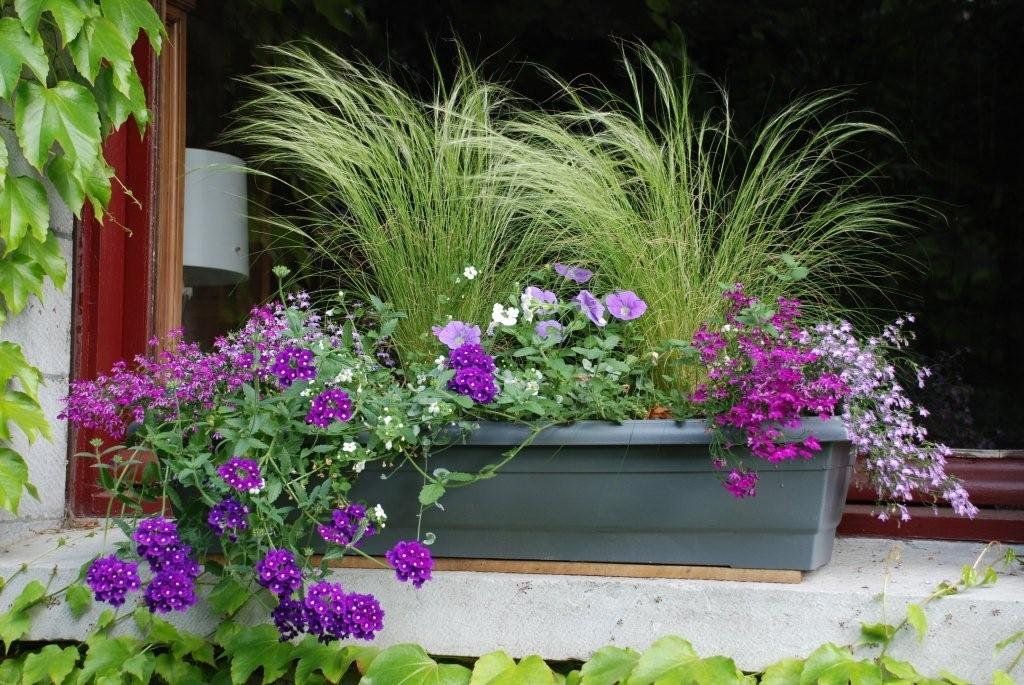 idee jardiniere id es de design d 39 int rieur. Black Bedroom Furniture Sets. Home Design Ideas